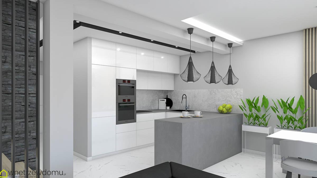 wiz008-salon-z-kuchnia-wnetrzewdomu