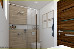 prysznic walk-in w łazience