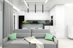 12_wiz-007-salon-z-kuchnią-wnetrzewdomu