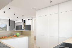 13_wiz-005-salon-z-kuchnią-wnetrzewdomu