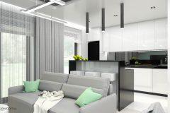17_wiz-004-salon-z-kuchnią-wnetrzewdomu