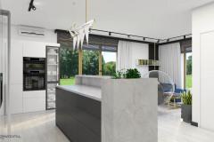 17_wiz-salon-z-kuchnią-wnetrzewdomu-8