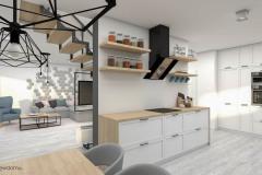 1_wiz-salon-z-kuchnią-wnetrzewdomu-9