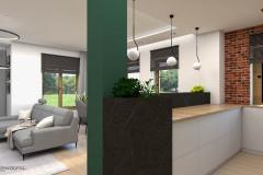 25_wiz-salon-z-kuchnią-wnetrzewdomu-2