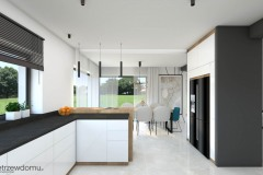 50_wiz-salon-z-kuchnią-wnetrzewdomu-3