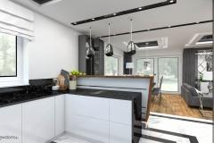 7_wiz-salon-z-kuchnią-wnetrzewdomu-3