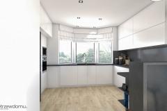 9_wiz-001-salon-z-kuchnią-wnetrzewdomu