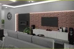 zabudowa ściana telewizyjna