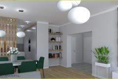 salon z półotwartą kuchnią